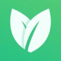 Dtea茶交所app官方版 v1.0.2